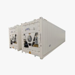 40′ High Cube Refrigerated Super Freezer Container